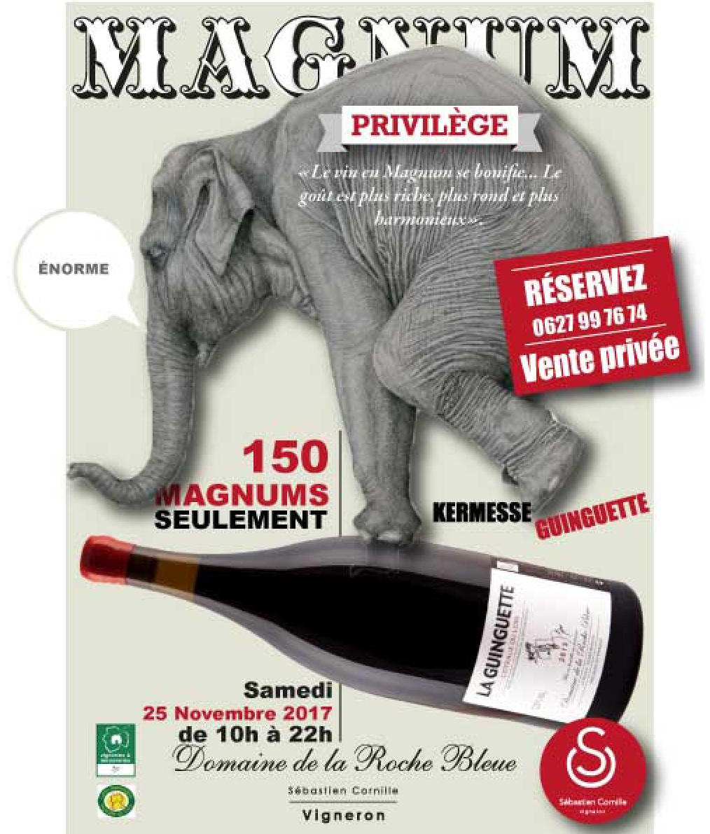 flyers-vente-magnums-001.jpg